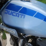 Ducati Darmah - 1980 - Ducati Decal, Gas Tank and Desmo Decal.