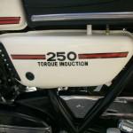 "Yamaha RD250B - 1975 - Side Panel ""Torque Induction"""