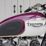 Triumph Bonneville - 1967 - Gas Tank, Knee Pad, Triumph Badge and Paintwork.