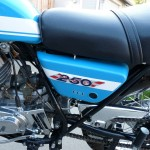 Suzuki TS250 - 1972 - Side Panel, 250 Badge, Seat and Strap.