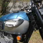 Triumph Trophy TR6 - 1968 - Gas Tank, Triumph Logo, Steering Head and Gas Cap.