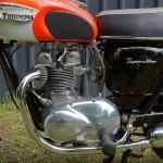 Triumph Tiger 350 - 1967