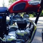 Triumph Bonneville T120R - 1968