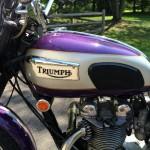 Triumph Daytona - 1970